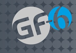 GF6 section header.jpg
